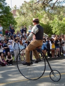 Old-timey bicycle; Davis has a rich history with bicycling.