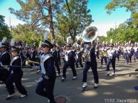 The annual picnic day features a parade line-up of what makes Davis special. Here we see Band-uh! leading the parade.