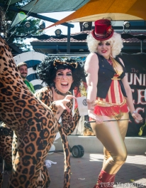 The Moral Minority stage at the 2014 Lagunitas Beer Circus in Petaluma CA is full of traditional circus acts including playful kittens and their ringmaster. Photo Melissa Uroff
