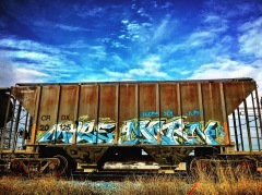 Box Car, Artist Unknown, Granite Regional Park, Sacramento, CA