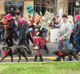 Allyson Seconds, Lu ad Hank, Woman's March Sacramento, January 21, 2017. Photo Paige Lettington.