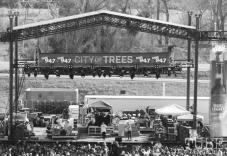 New Politics from above, City of Trees, Sacramento, CA, September 24, 2017 Photo by Dan Tyree