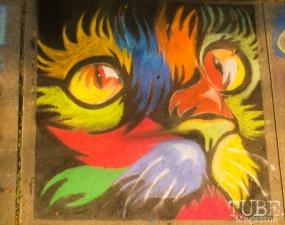 Colorful Kitten, Chalk It Up, Fremont Park, Sacramento, CA, September 4, 2017 Photo Dan Tyree